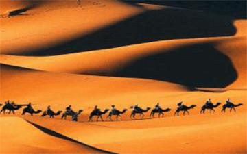 desert-trip-to-merzouga